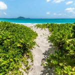 path to kailua beach