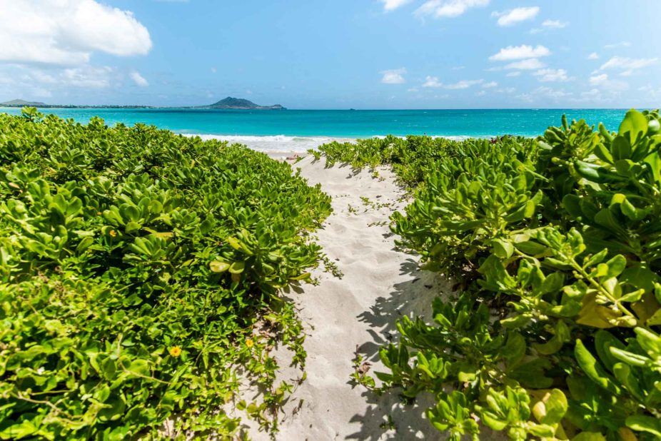 path to kailua beach