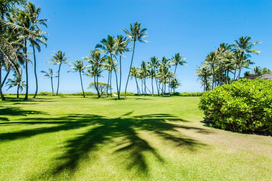Kailua Shores yard is perfect for weddings