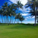 Kailua Shores yard